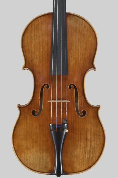 viola 41cm, tavola
